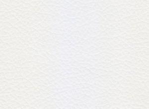Blanco liso